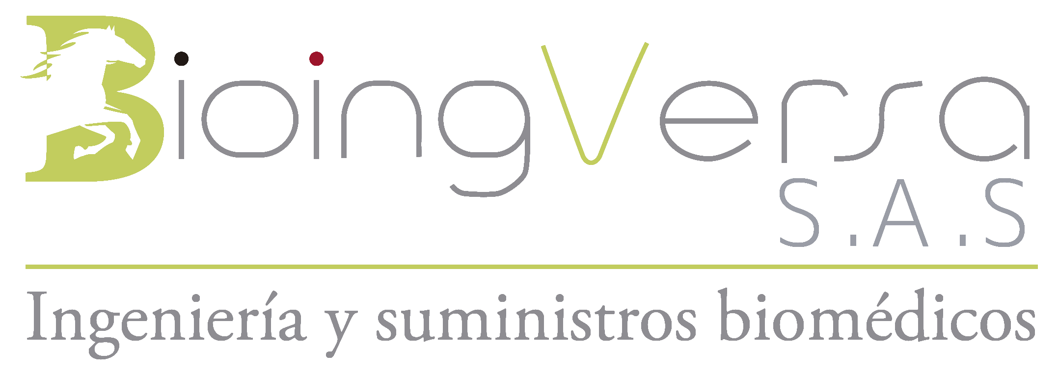 Bioingversa S.A.S